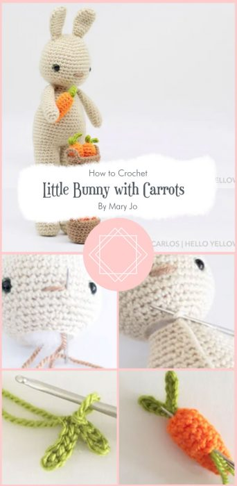 Little Bunny with Carrots By Mary Jo