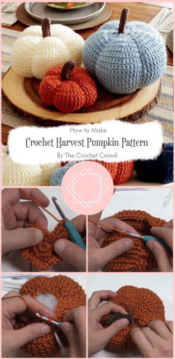 Crochet Harvest Pumpkin Pattern By The Crochet Crowd